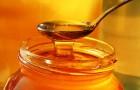 Гигроскопичность меда
