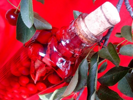 Настойка вишневая с пряностями
