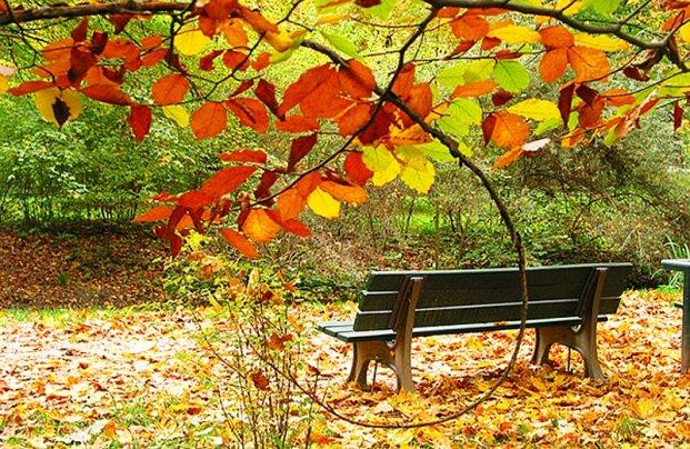 Осенний период