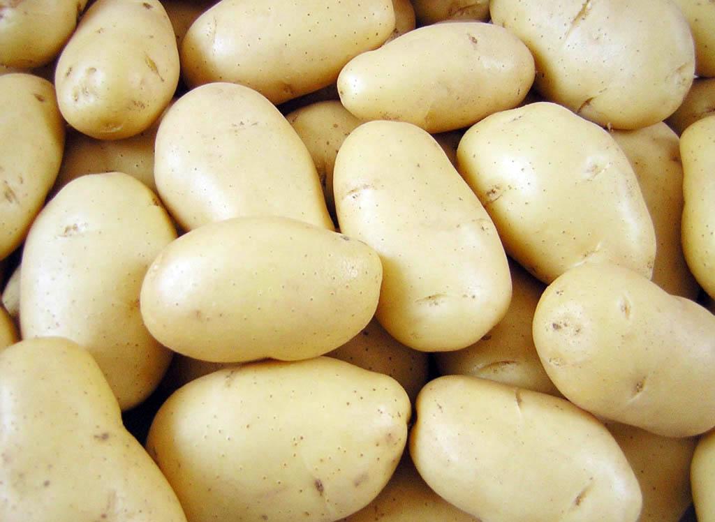 Самогон картофельный (первый вариант)