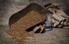 Самогон пшеничный