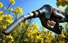 Толстые гусеницы - ключ к разработке биотоплива из растений