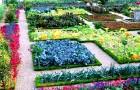 Весенний огород