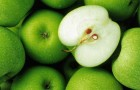 Яблочный экстракт борется с раком успешнее, чем химиотерапия