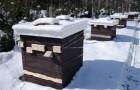 Зимовники для пчел