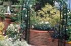Проект сада «Золотой сад»