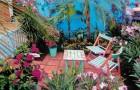 Проект сада «Вы хотели бы быть здесь?»