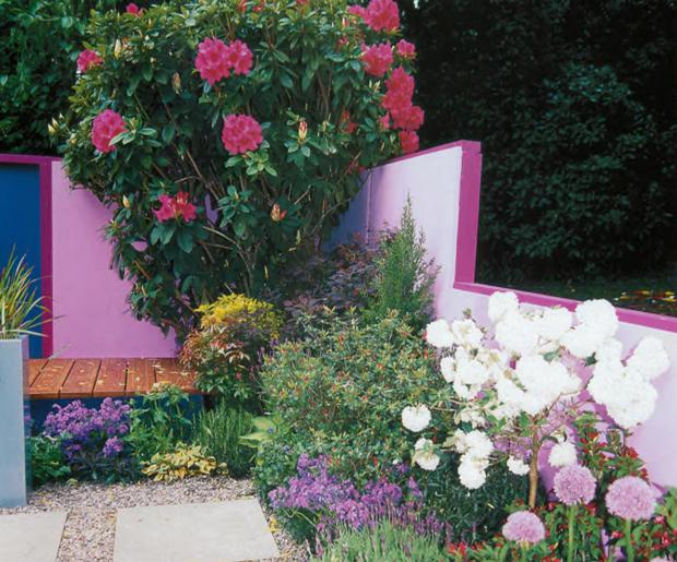 Проект сада «Подиум в саду»