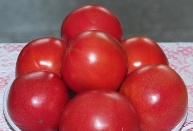 Сорт томата: Эфенди f1