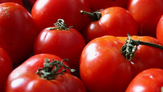 Сорт томата: Эля