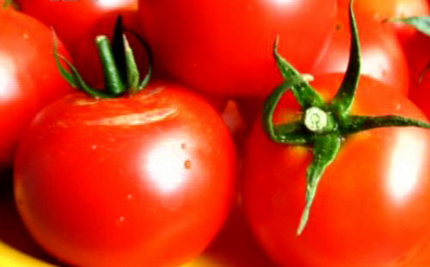 Сорт томата: Флажок