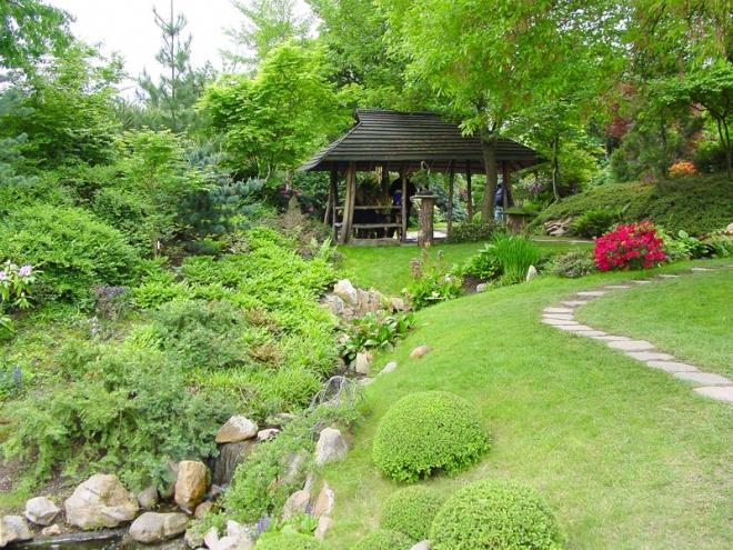 Формирование растений японского сада