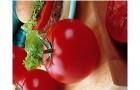 Сорт томата: Халиф f1