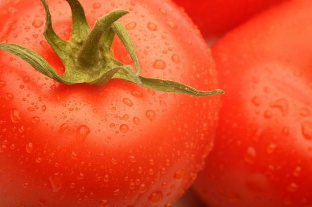 Сорт томата: Хай- колор 312   f1