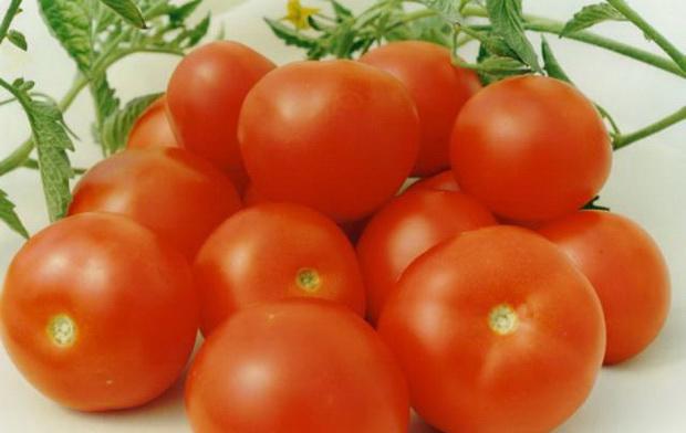 Сорт томата: Хоровод