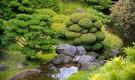 Извилистый ручей