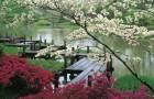 Мосты для японского сада