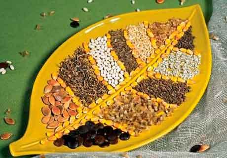 Определение качества семян