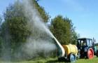 Пестициды убивают пчел: урожай в опасности