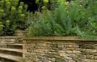 Приподнятое ложе для сухого сада
