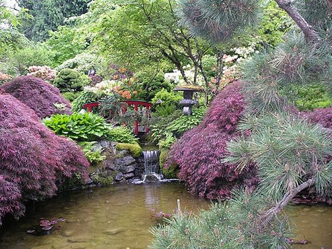 Простота японского сада