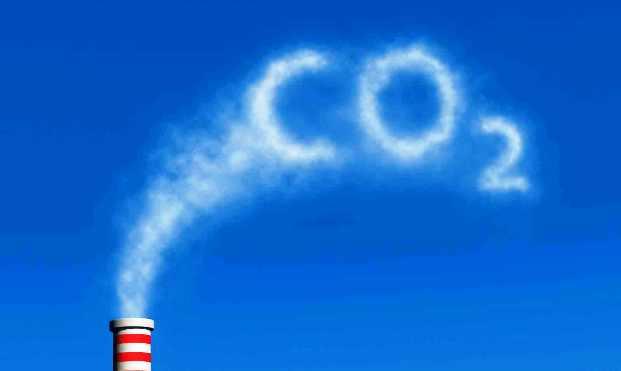 Растения страдают от недостатка CO2