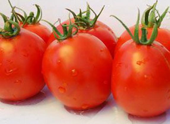 Сорт томата: Ром   f1