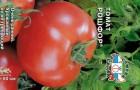 Сорт томата: Рошфор
