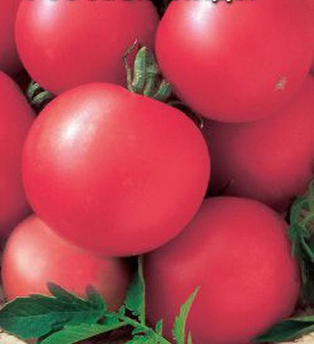 Сорт томата: Розовый лидер