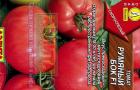 Сорт томата: Румяный бок f1