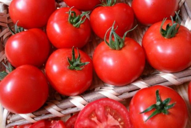 Сорт томата: Шелф   f1