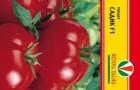 Сорт томата: Садик f1