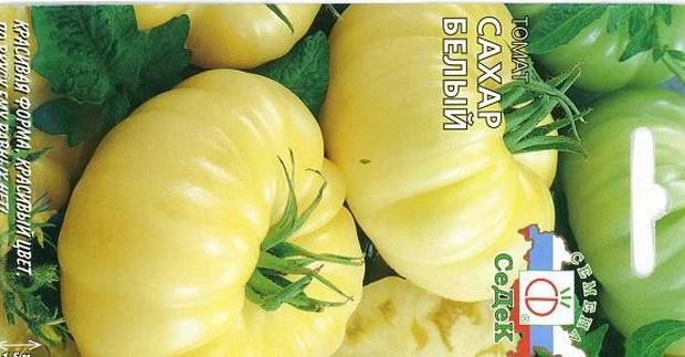 Сорт томата: Сахар белый