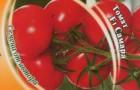 Сорт томата: Самара f1