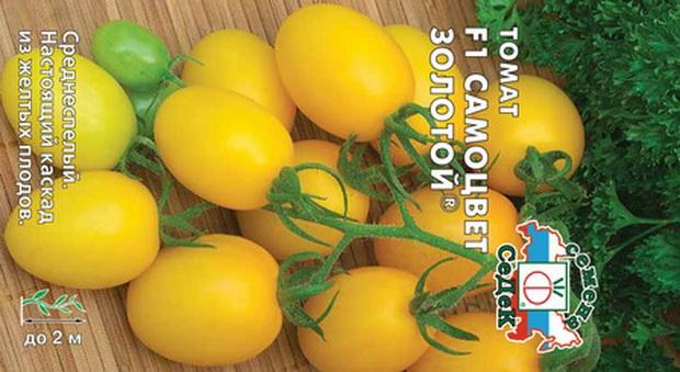 Сорт томата: Самоцвет золотой   f1