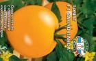 Сорт томата: Санчо панса f1