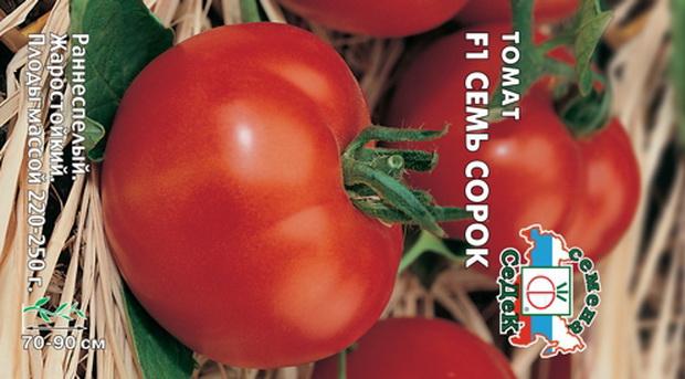 Сорт томата: Семь сорок   f1