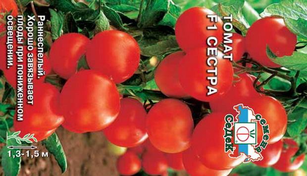 Сорт томата: Сестра   f1