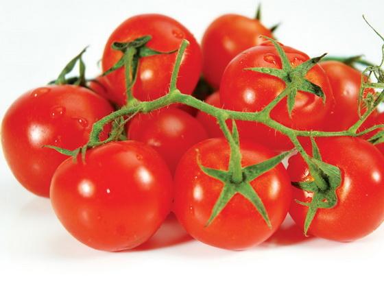 Сорт томата: Сейлин   f1
