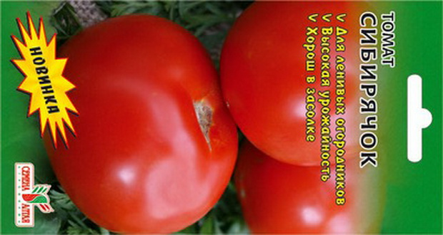 Сорт томата: Сибирячок
