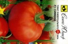 Сорт томата: Симона f1