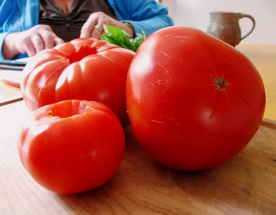Сорт томата: Слот   f1