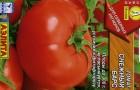 Сорт томата: Снежный барс