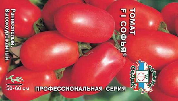 Сорт томата: Софья   f1
