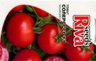 Сорт томата: Солероссо f1