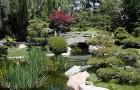 Создание острова в японском саду