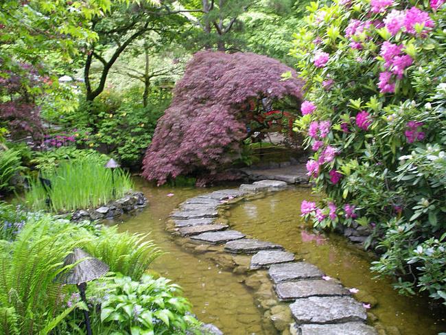 Создание простого водоема в японском саду
