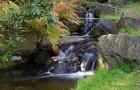 Создание водопада в японском саду