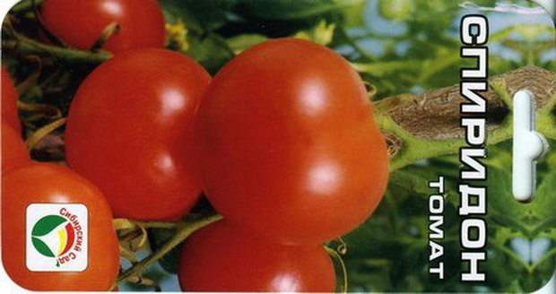 Сорт томата: Спиридон