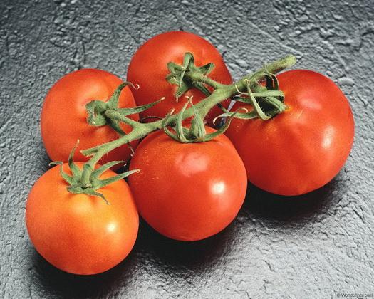 Сорт томата: Сударь   f1